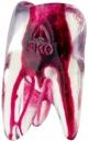 FKG 3D Tooth - Ząb treningowy - górny lewy trzonowiec