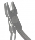 Kleszcze De La Rosa AG 036